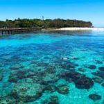ケアンズ・グリーン島の過ごし方②お魚とサンゴが見れるシュノーケリングビーチ