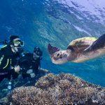 ケアンズ グリーン島で体験ダイビング!所要時間と潜ってる時間はどの位?