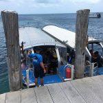 グリーン島 グラスボトムボートのツアー内容と楽しむコツ・裏ワザを紹介!