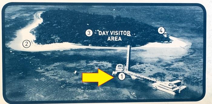 ↑5分前にはグリーン島マップ①